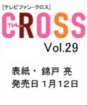 cross29WEB